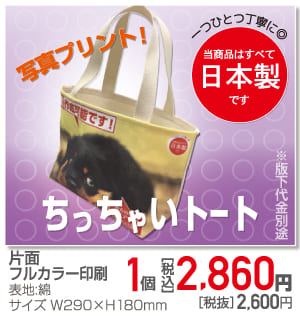 item_202012_totobag