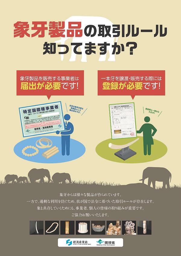 象牙製品の取引ルール知ってますか