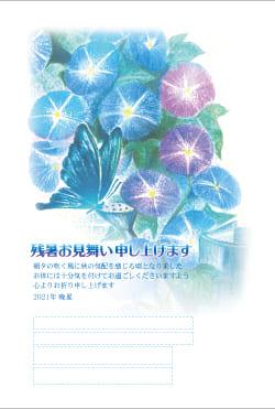 暑中見舞いはがき印刷 SNT-011